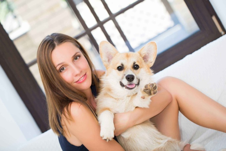 Dogs and Their Owners' Stories